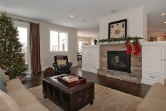 Living Room & Fireplace Mantle