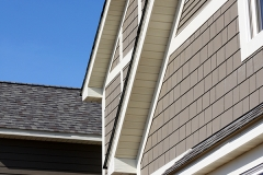Front Exterior Siding & Roof